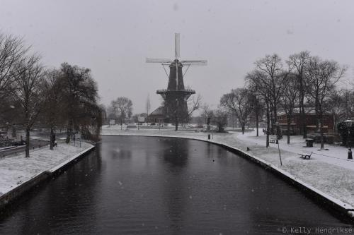 Windmill De Valk in Leiden